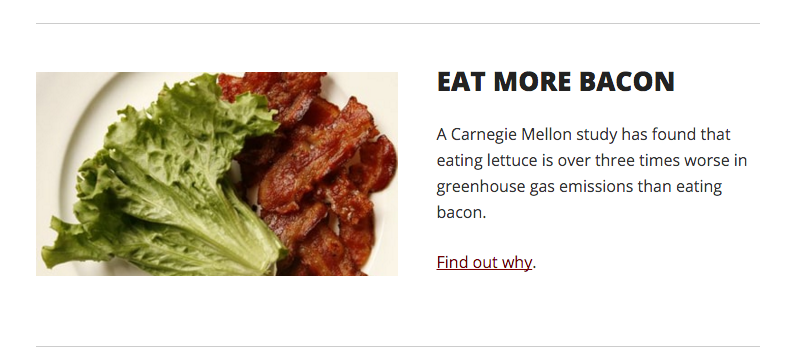 Carnegie Mellon Eat More Bacon Dec 15 2015