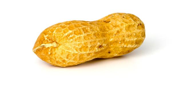 Peanut-Feature